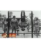肌肉网推荐:健美训练