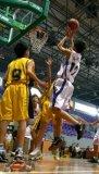 篮球爱好者弹跳力训练计划