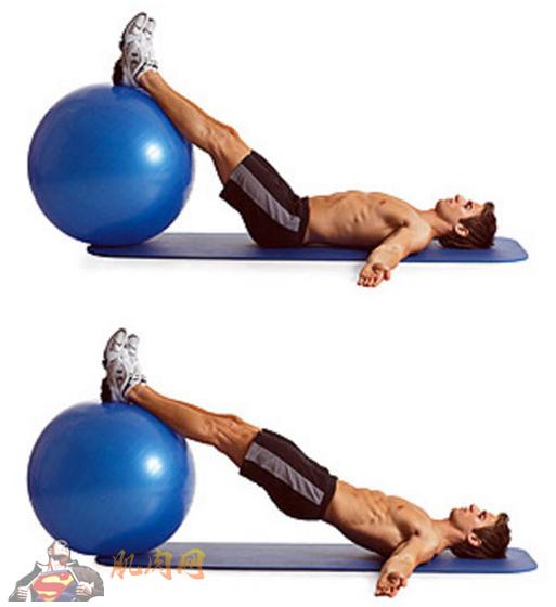 背部肌肉锻炼固)�_无器械臀部锻炼动作_肌肉网