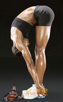 (译)静态伸展动作与柔韧性训练计划 - safeguarddo - 菊千代的博客