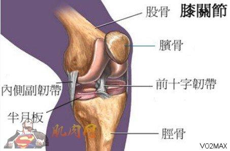 运动预防膝关节损伤<wbr>(膝关节的损伤训练文章很多,大家都可以多看看!)