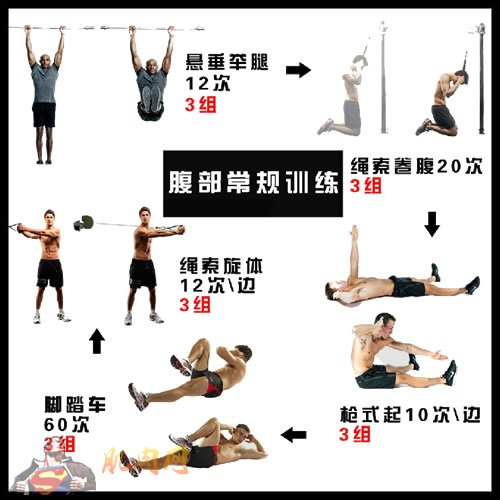 男人腰部锻炼方法_腹肌常规训练卡片_肌肉网