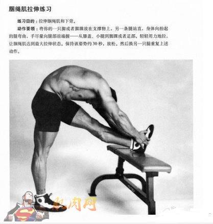 背部健身_10分钟学会拉伸(图解)_肌肉网