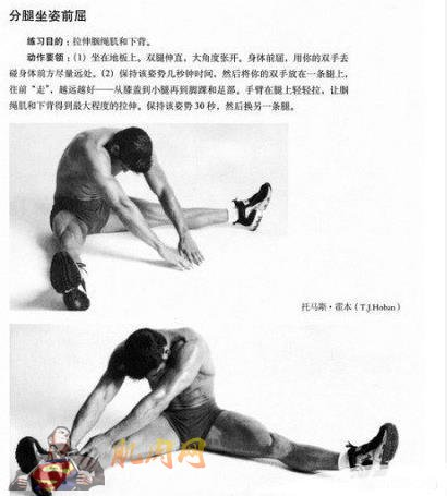 腹部肌肉锻炼视频_10分钟学会拉伸(图解)_肌肉网