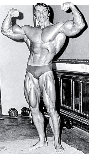 腰部,腹肌锻炼(金字塔法则训练法)