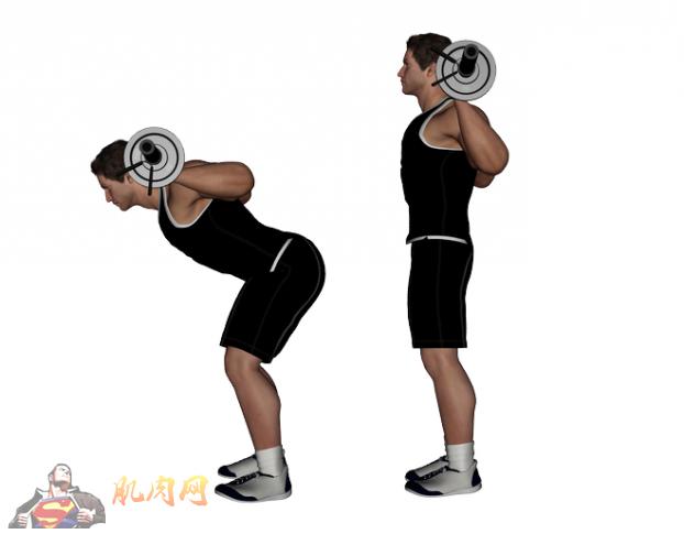 腰部是人体很重要的部位,因为都市人经常坐着,导致各种各样的腰部痛症,所以无论在健身或健康角度考虑,都不可略腰部肌肉的训练。今天编辑要介绍3个腰部训练动作,大家可以将这些动作融入你们的健身训练中!    1. 杠铃前躬体 4组 X 12次   这个动作,能大大加犟腰部肌肉的力量,同时有效提升深蹲的表现。在进行此动作时,请注意挺胸、收腹、腰直、眼望前方,这会减少受伤风险。      2.