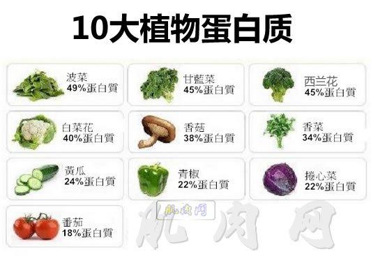 10大植物蛋白质(吸收比动物蛋白差)