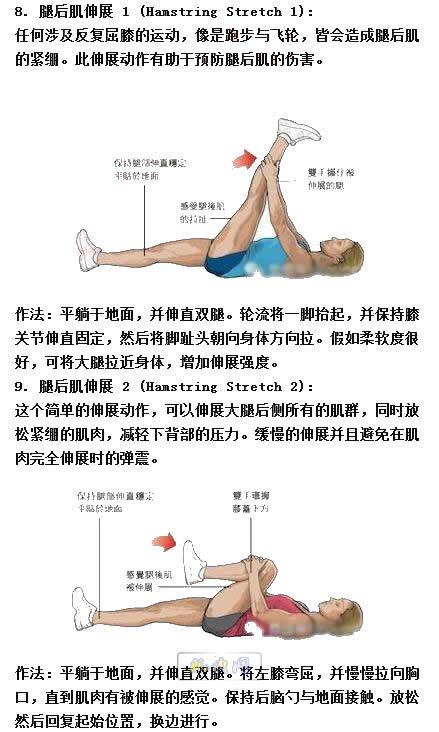 背部健身_拉伸动作大全(预防伤病帮助恢复)_肌肉网