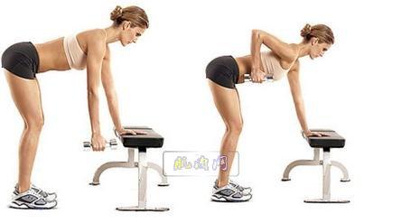 哑铃练二头肌锻炼方法图解