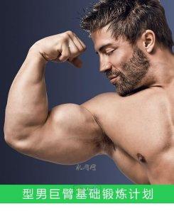 巨臂基础锻炼计划