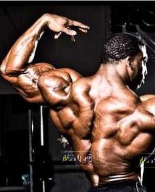 健身房每周三练健身计划(