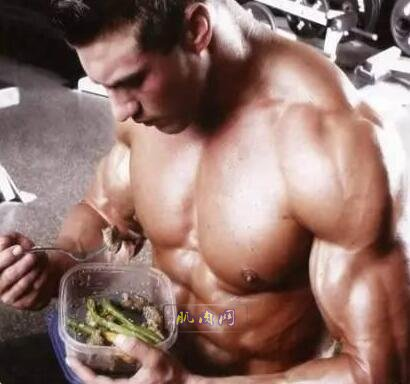 胖子怎么练成肌肉型男