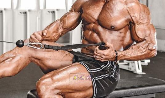背部锻炼动作_背阔肌训练:绳索单臂划船_肌肉网
