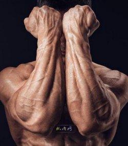 前臂肌肉锻炼:2个哑铃动作推荐