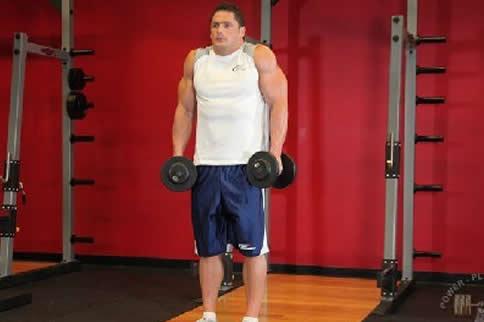 斜方肌怎么练最有效果 这3招最有效 增肌健身