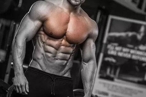 健身胸部训练计划方案表 狗州网址